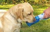 heininger holdings pet supplies water bottles he3058